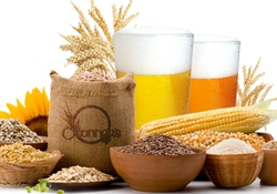 The beer and food revolution